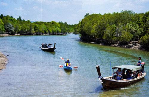 ล่องเรือชมป่าโกงกาง