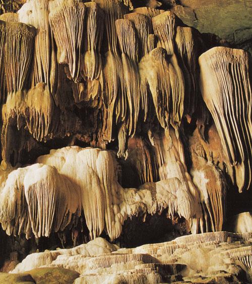 ถ้ำนกนางแอ่น อุทยานแห่งชาติลำคลองงู กาญจนบุรี