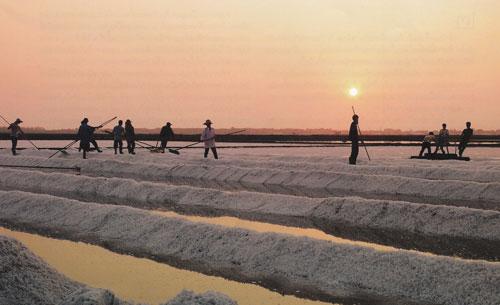 เที่ยวชมนาเกลือ ดูการปั้นน้ำเป็นเกลือ อำเภอบ้านแหลม จังหวัดเพชรบุรี