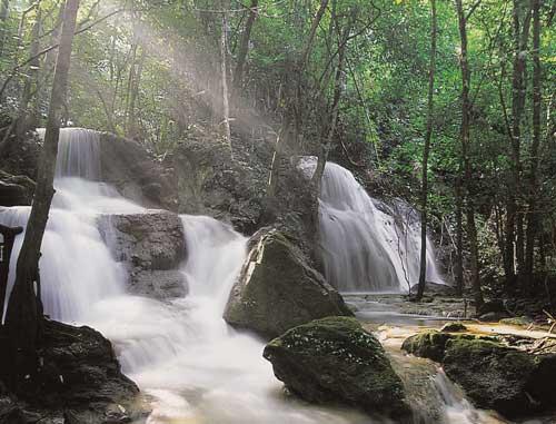 น้ำตกผาสวรรค์ อุทยานแห่งชาติเขื่อนศรีนครินทร์ จังหวัดกาญจนบุรี