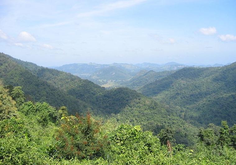 พรรณไม้ในผืนป่ามรดกโลก และชุ่มฉ่ำกับสายน้ำ เขาใหญ่ นครราชสีมา
