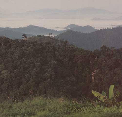 เที่ยวน้ำตก สวนผึ้ง ราชบุรี